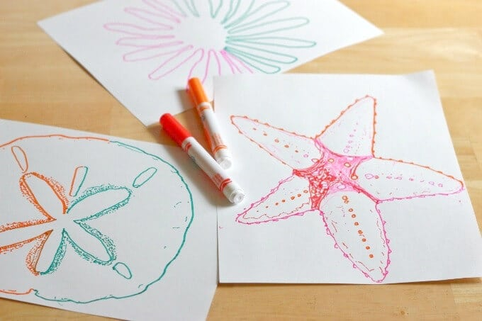 Double Doodle Starfish and Sand Dollar