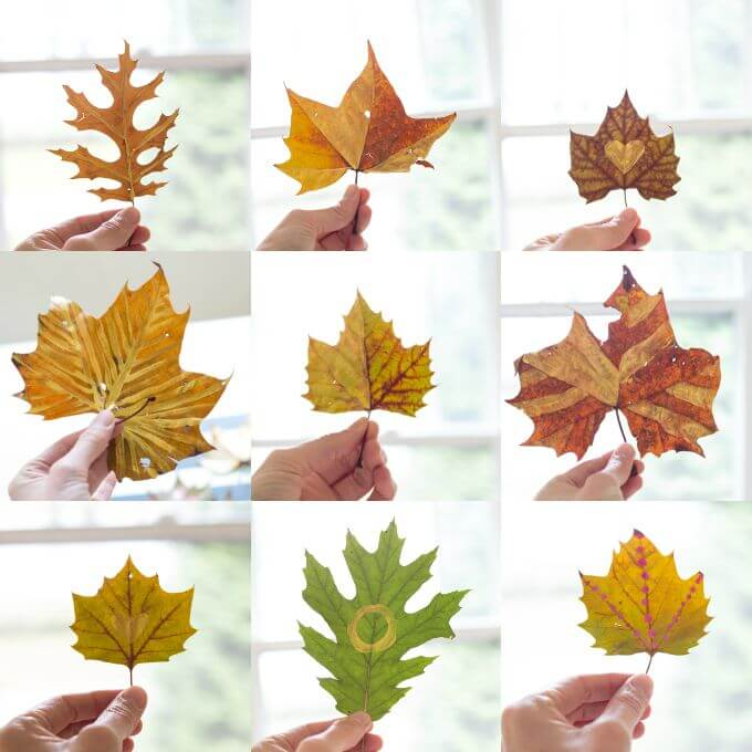 Create This Simple DIY Autumn Leaf Wreath For Fall - Painted Autumn Leaves